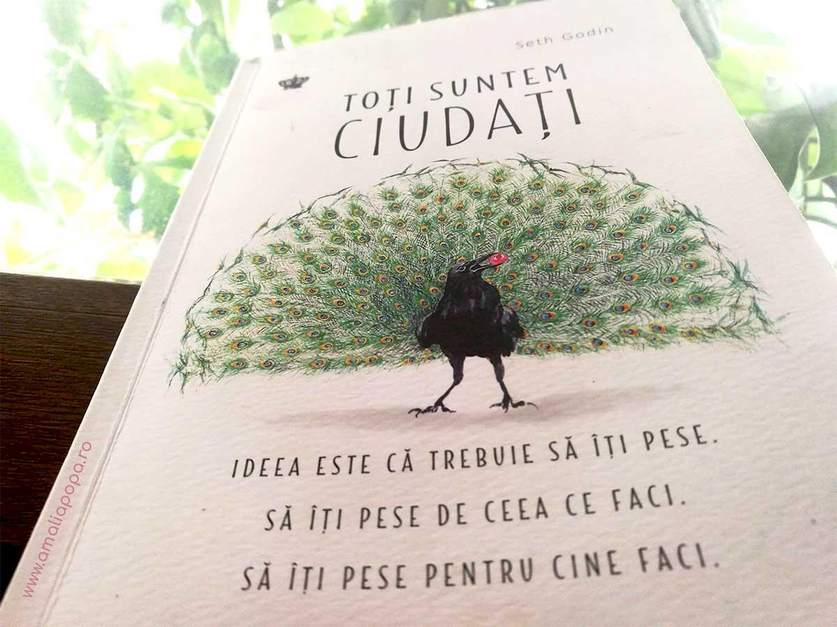 Cartea de azi: Toti suntem ciudati | Seth Godin